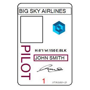 PILOT ID TEMPLATE 1