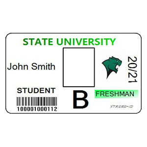 STATE UNIVERSITY TEMPLATE